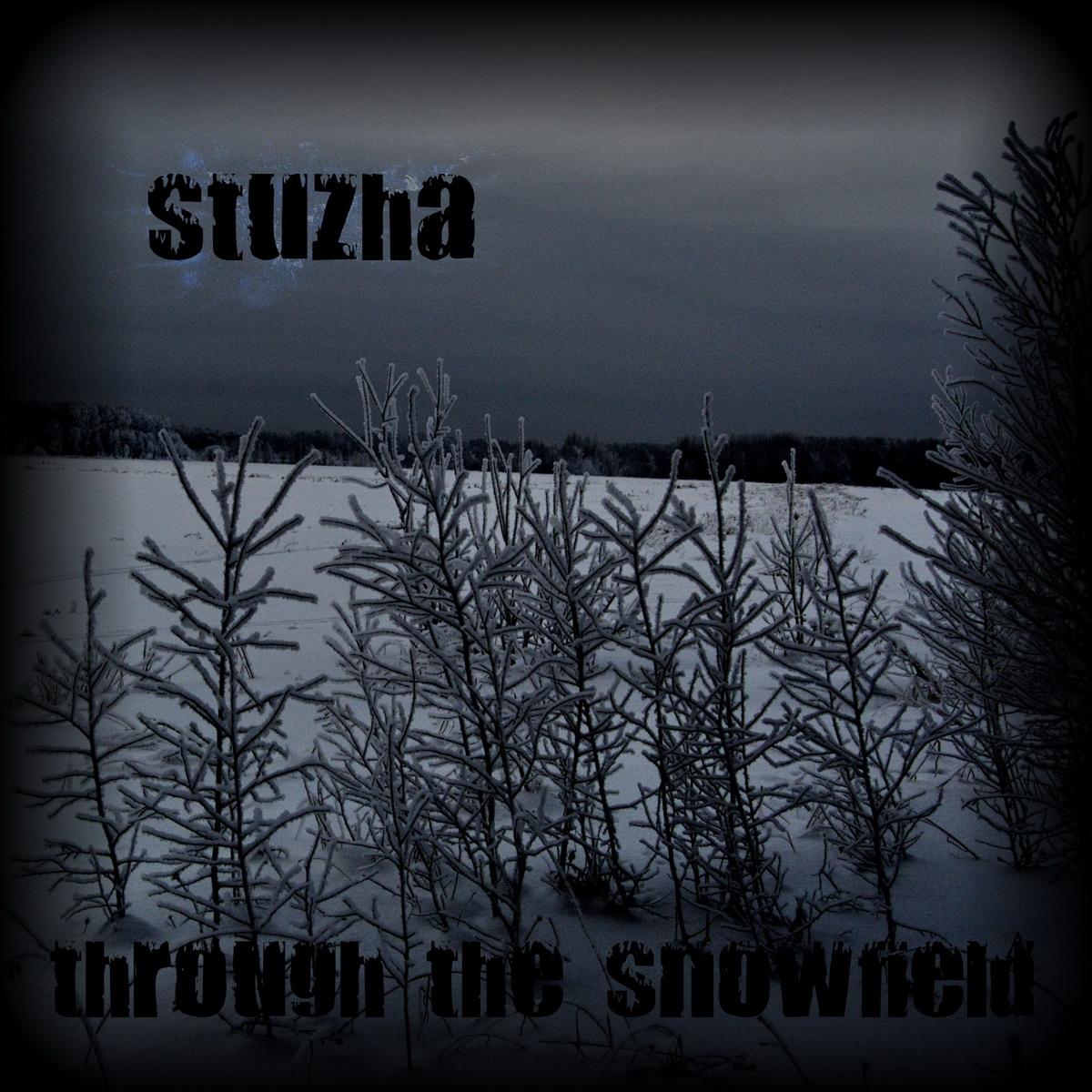 stuzha_01.jpg