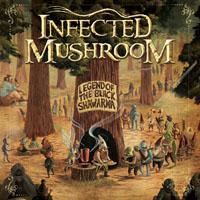 infected-mushroom-2009.jpg