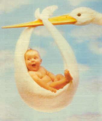 stork-baby.jpg